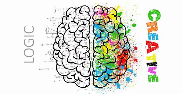 agy, agyfelteek, csakra, muladhara, jobb, rajzolas, nagyszaffinaeletmuvei