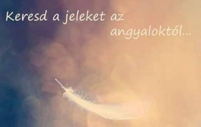 jel-angyal-üzenet-mindenszentek-nagyszaffinaéletművei