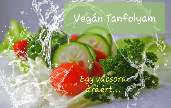 Vegan Tanfolyam 10 hónapon keresztül, online, otthonról, kényelmesen, te tempódban egy vacsora áráért